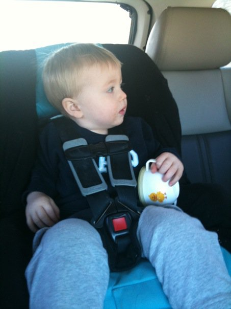 The car seat debate and how we came back to backwards