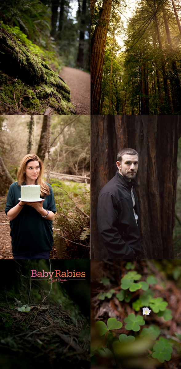Muir Woods Collage | BabyRabies.com