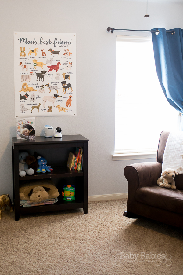 Blue and gold, dog themed nursery with gold arrow wall | BabyRabies.com - Poster is by Land Of Nod