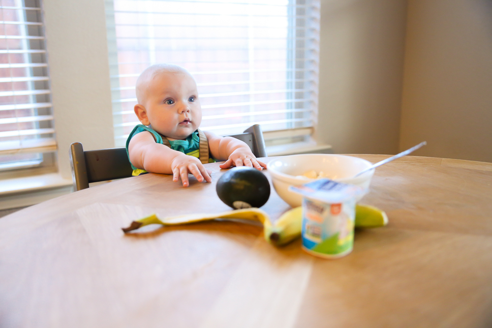 Wallace Is Ready To Eat! Here's How We're Keeping It Simple | BabyRabies.com